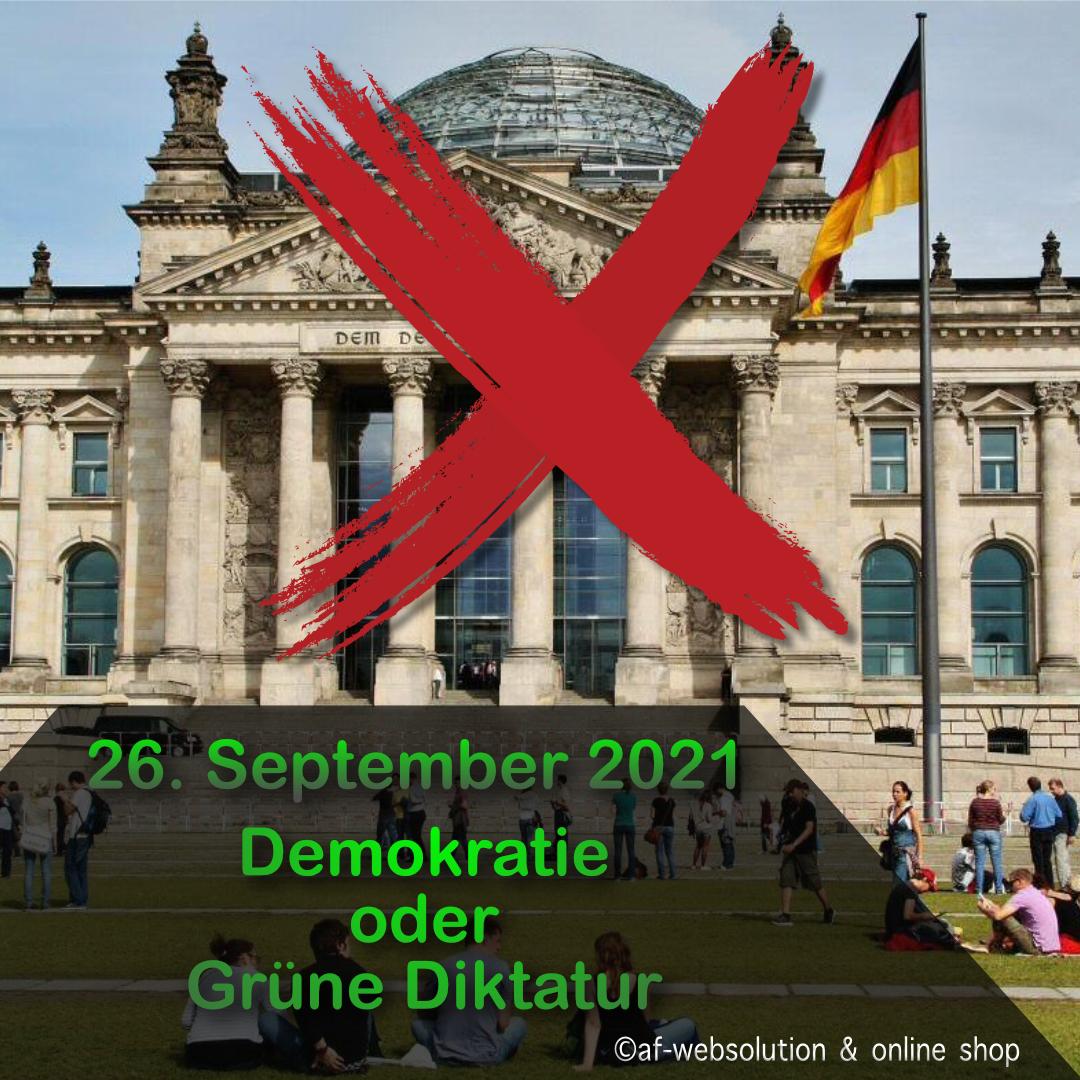 """Read more about the article Demokratieverständnis der Partei """"Die Grünen"""""""